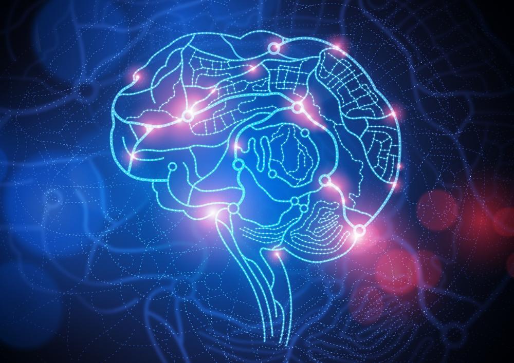 digital brain 4